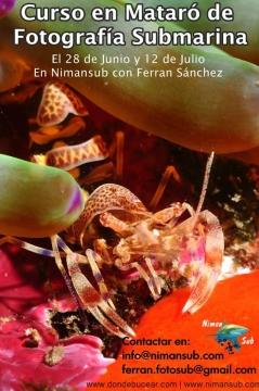 Curso fotografía submarina en Mataró